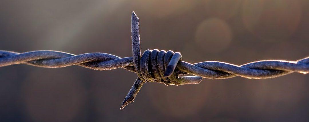 Le netlinking : les stratégies de liens autorisées et non autorisées !